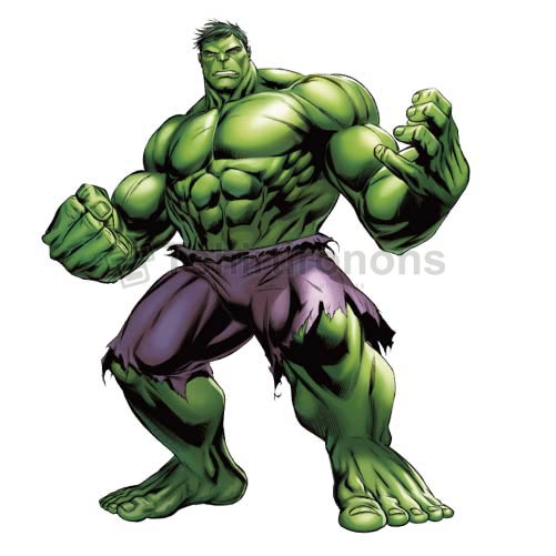 Hulk T-shirts Iron On Transfers N4543