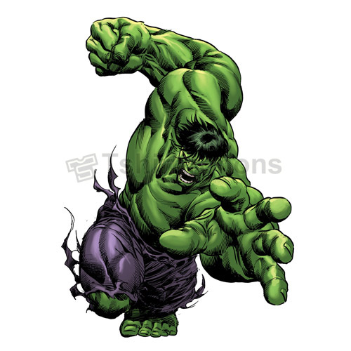 Hulk T-shirts Iron On Transfers N4550
