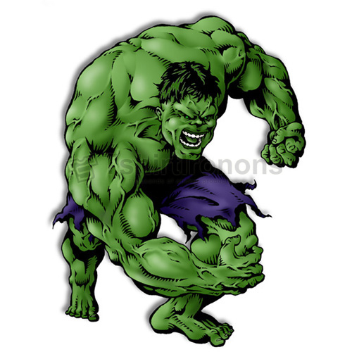 Hulk T-shirts Iron On Transfers N4553