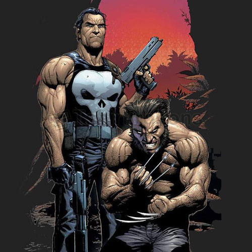 Punisher T-shirts Iron On Transfers N5076