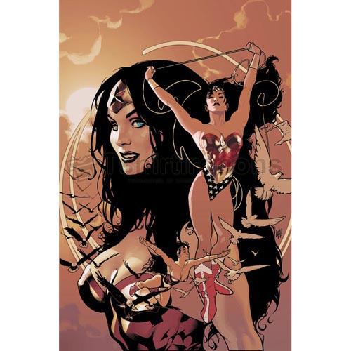 Wonder Woman T-shirts Iron On Transfers N4727