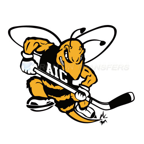 AIC Yellow Jackets 2009-Pres Alternate Logo T-shirts Iron On Tra
