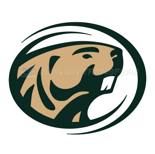 Bemidji State Beavers 2004 Logo T-shirts Iron On Transfers N3994