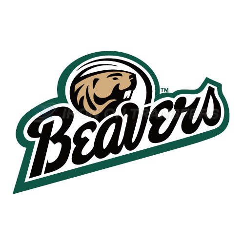 Bemidji State Beavers 2004 Pres Logo T-shirts Iron On Transfers