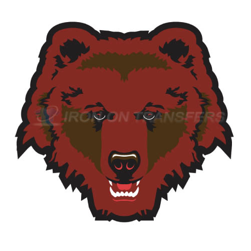 Brown Bears logo T-shirts Iron On Transfers N4031