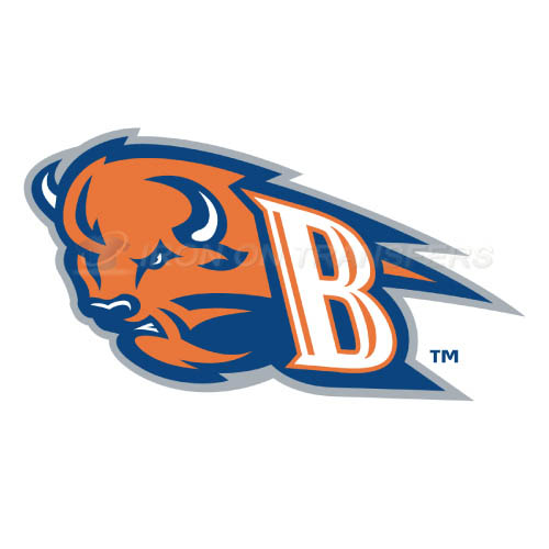 Bucknell Bison logo T-shirts Iron On Transfers N4035