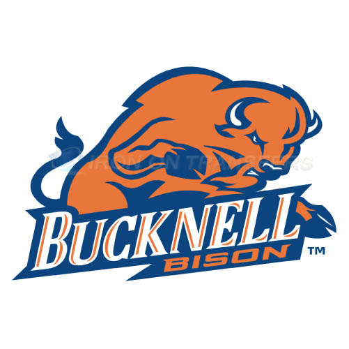 Bucknell Bison logo T-shirts Iron On Transfers N4037
