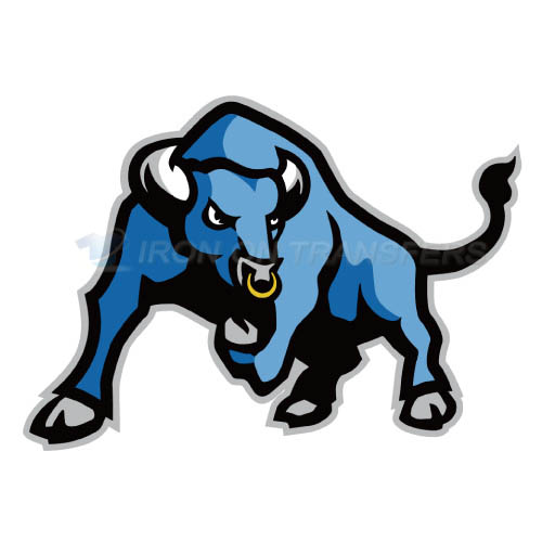 Buffalo Bulls logo T-shirts Iron On Transfers N4039