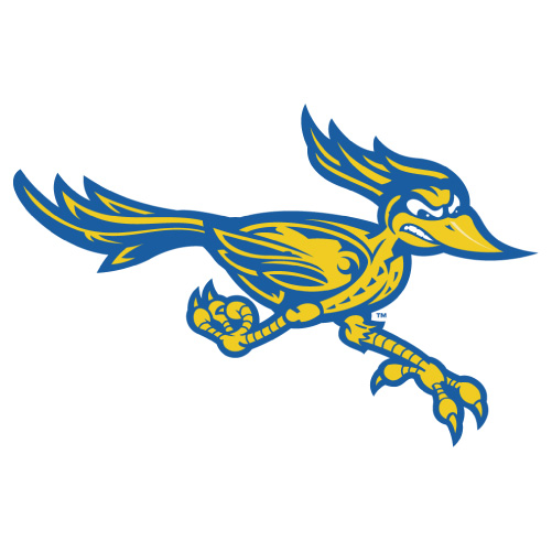 CSU Bakersfield Roadrunners logo Iron-on Transfers N4063