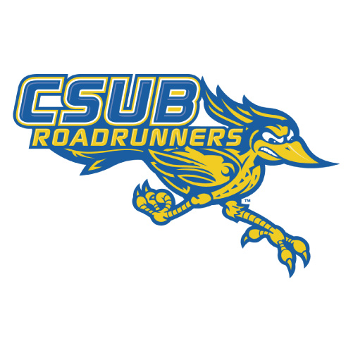 CSU Bakersfield Roadrunners logo Iron-on Transfers N4065