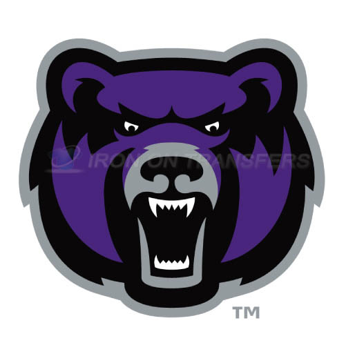 Central Arkansas Bears logo T-shirts Iron On Transfers N4108