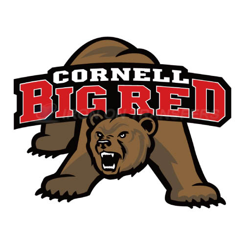 Cornell Big Red logo T-shirts Iron On Transfers N4196