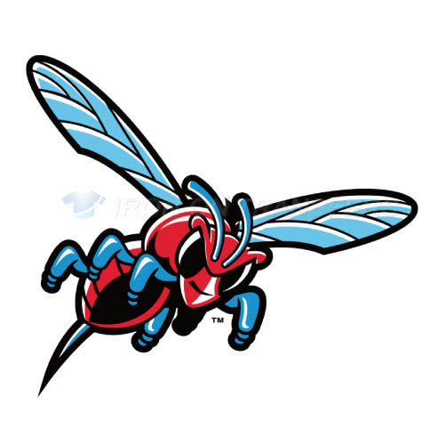 Delaware State Hornets Logo T-shirts Iron On Transfers N4245