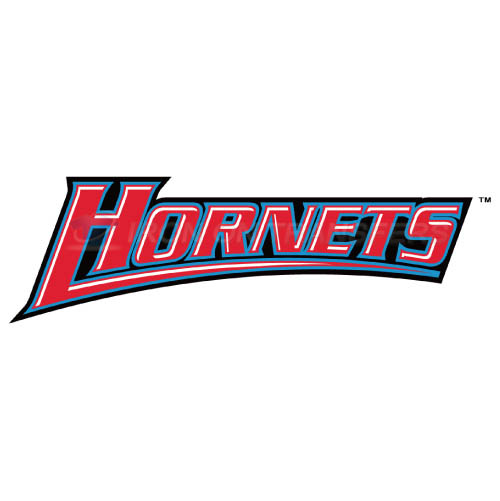 Delaware State Hornets Logo T-shirts Iron On Transfers N4249