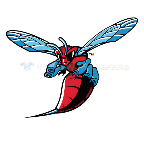 Delaware State Hornets Logo T-shirts Iron On Transfers N4251