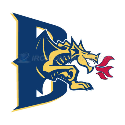 Drexel Dragons Logo T-shirts Iron On Transfers N4281