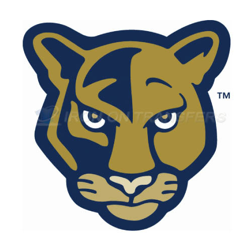 FIU Panthers Logo T-shirts Iron On Transfers N4364