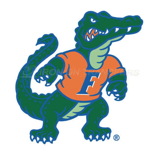 Florida Gators Logo T-shirts Iron On Transfers N4384