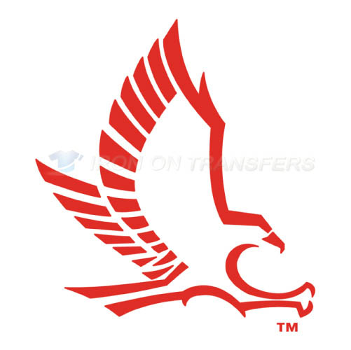 Hartford Hawks Logo T-shirts Iron On Transfers N4534