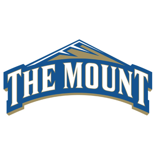 Mount St Marys Mountaineers Logo T-shirts Iron On Transfers N521