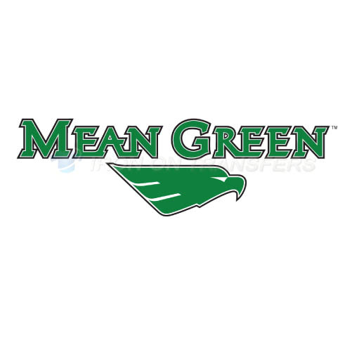 North Texas Mean Green Logo T-shirts Iron On Transfers N5621