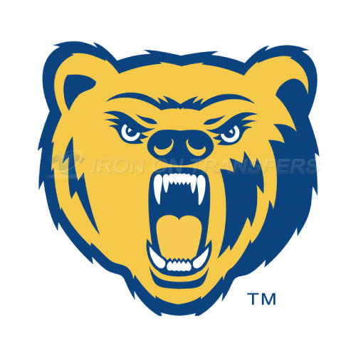 Northern Colorado Bears Logo T-shirts Iron On Transfers N5653