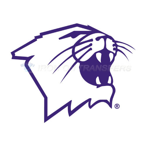 Northwestern Wildcats Logo T-shirts Iron On Transfers N5705