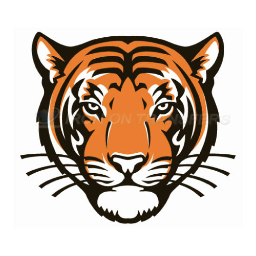 Princeton Tigers Logo T-shirts Iron On Transfers N5927