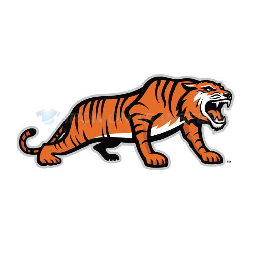 RIT Tigers Logo T-shirts Iron On Transfers N6013