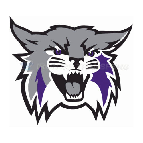 Weber State Wildcats Logo T-shirts Iron On Transfers N6918