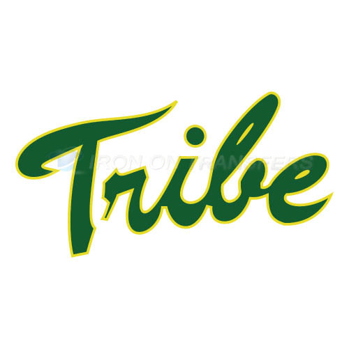 William and Mary Tribe Logo T-shirts Iron On Transfers N7005