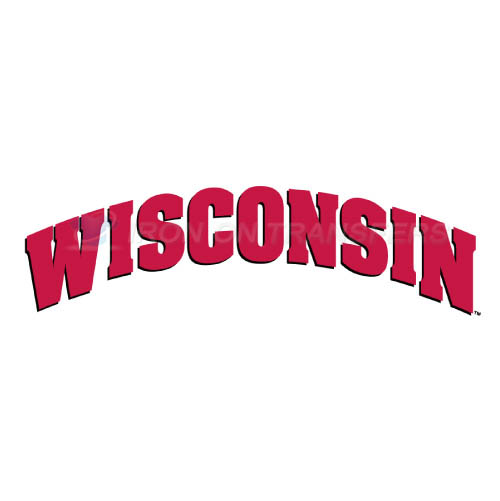 Wisconsin Badgers Logo T-shirts Iron On Transfers N7022