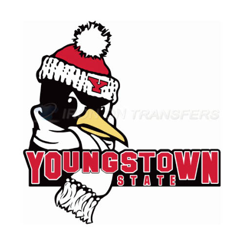 Youngstown State Penguins Logo T-shirts Iron On Transfers N7095